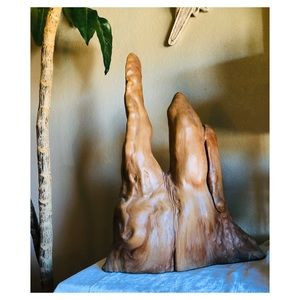 Vintage Cypress Root Display Piece